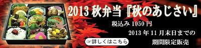 2013秋のあじさい