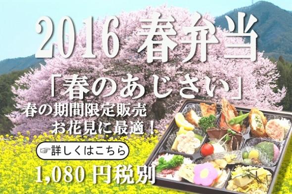 2016春のあじさい税別