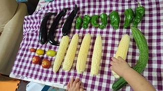 夏野菜たち①